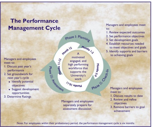 performance cycle3.jpg