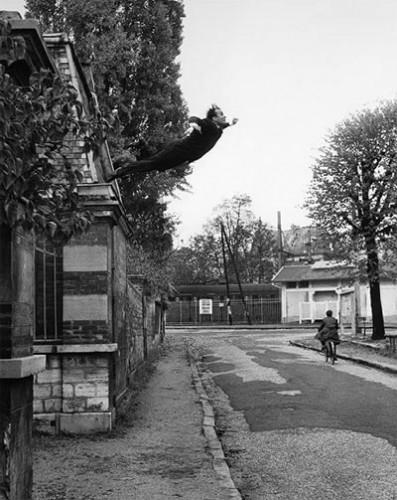 yves_klein - Le saut dans le vide - 1960.jpg